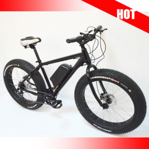 "Snow Electric Bike with 26"" * 4.0 Tire / 48V Samsung Li-Battery pictures & photos"