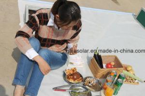 Dezhou Portable Solar Cooker Smoke Free Barbecue pictures & photos