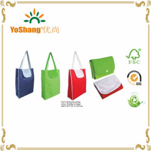 Eco Friendly High Quality Non Woven Foldable Shopping Bag pictures & photos