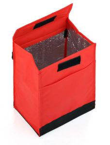 Hot Sale Cute Lunch Handbags Cooler Bag (TP-CB354) pictures & photos
