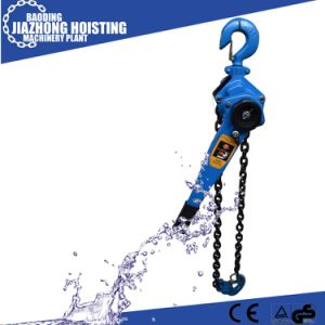 China Factory Hs-Vt Type 20ton 3meter Black Chain Hoist