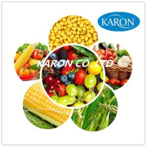 Fungicide Pesticide Mancozeb 85%Tc, 90%Tc, 80% Wp, 50%Wp, CAS: 8018-01-7