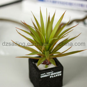 Decorative Plant Natural Touch Artificial Succulents Artificial Flower (SW17665)