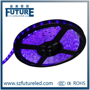 Plastic & Polymer 12V RGB Flexible LED Light Strip with 5m/Roll pictures & photos