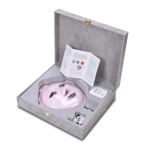 Facial Vibration Massage and Anti-Aging Wrinkle Removal Beauty Equipment with LED Light Wy-1003 pictures & photos