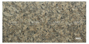 Porcelain Ceramic Stone Granite Tile for Wall (300X600mm)