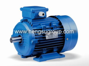 Ms Series Aluminium Body Three Phase Induction Electric Motor pictures & photos