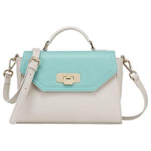 Best Selling Fashion Women PU Cross Body Handbag (CG8966) pictures & photos