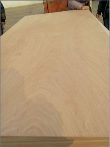 Ocuman Film Plywood, Bintangor Plywood, Decorative Plywood pictures & photos