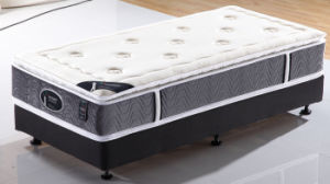 Popular USA Design Spring Mattress pictures & photos