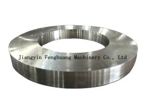 Asme Gravity Casting Forged Ring pictures & photos