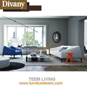 Sofa Living Divani Fresh Sofa for Projects pictures & photos