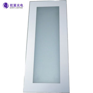 Bathroom Mirror Light with High Quality LED Mirror Light (QY-M1114)