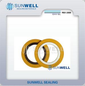 Standard Spiral Wound Gasket Cg Cgi R Rir etc pictures & photos