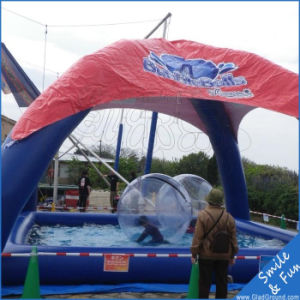 Big Water Ball Inflatable with TPU 0.8mm Material Inflatable Water Walking Ball pictures & photos