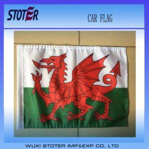 2016 Car Window Flag for President Donald Trump Car Flag with 50cm Plastic Flag Pole pictures & photos