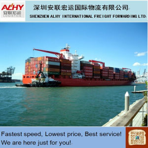 LCL Sea Shipping From China to Philadlphia (DDU / DDP to door)
