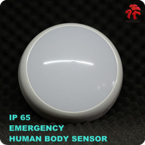 LED Emergency Ceiling Light 2W 800lm 280mm*90mm pictures & photos