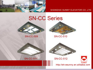Elevator Cabin Ceiling with Stainless Steel Frame (SN-CC-509) pictures & photos