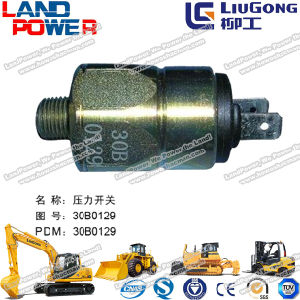 Liugong Fork Lift Truck Parts pictures & photos
