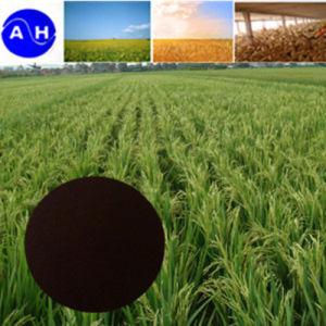 EDDHA Fe Na O-O 4.8 Fertilizer EDDHA pictures & photos