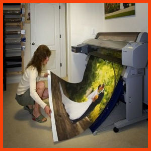 Digital Printing Textile Flag Canvas (SFC100) pictures & photos