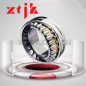 Stainless Steel Double Row Cylindrical Roller Self-Aligning Bearing