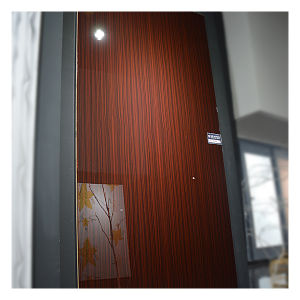 Zhuv Glossy MDF for Furniture Doors Material (ZH3939) pictures & photos