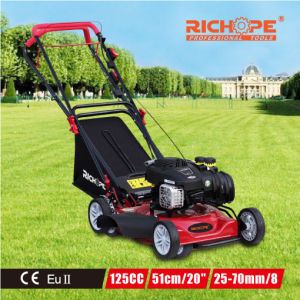 Professional Hot Sale China Supplier Economical Lawn Mower pictures & photos