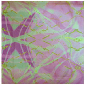 Printing Silk Fabrics for Chiffon with SGS Approved pictures & photos