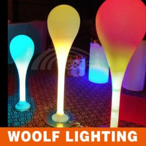 Modern Design Rechargeable LED Luxury Floor Lamps pictures & photos