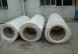 FRP Sheet in Roll with Gel Coat High Glossy Fiberglass FRP Rolls pictures & photos