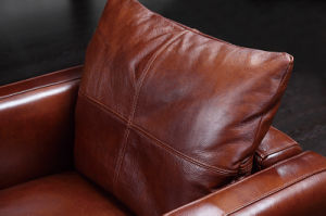 Modern Commercial Home Furniture Living Room Leather Sofa (HC3026) pictures & photos