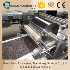 Gusu Chocolate Enrobing Cereal Bar Production Machine Made in Suzhou (TPX400) pictures & photos