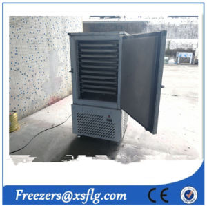 -35 C Fast Freezer/Blast Freezer (CE approval) pictures & photos
