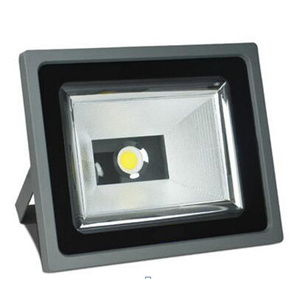 C30W Focus COB LED Flood Light pictures & photos