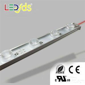 R/G/B/Y/W IP68 2835 SMD Waterproof LED Strip pictures & photos