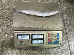 Chinese Pacific Saury Supplier pictures & photos