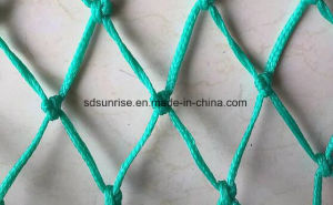 PE Fishing Net pictures & photos