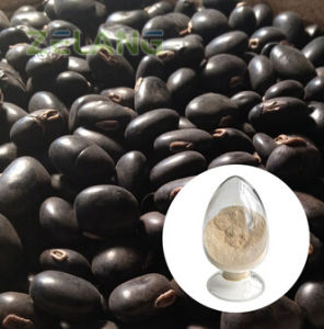 Mucuna Pruriens Extract 99% pictures & photos