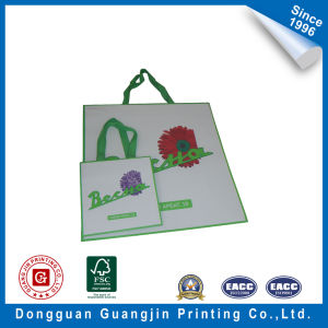 Printed Kraft Bag Shopping Bag Paper Bag pictures & photos