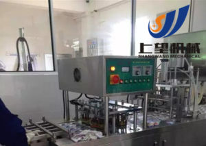 Complete Setted Yogurt Production Line pictures & photos