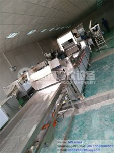 Wacs-2000 Fully Automatic Salad Processing Line Leaf Vegetable Washing Cutting Drying Line Root-Stock Washing Cutting Drying Packing Processing Line pictures & photos