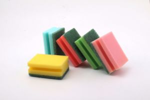 Factory Supply Superior High Quality Scouring Pad with Nylon Colorful pictures & photos