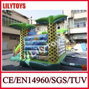 Lilytoys Cheap Inflatable Moving Combo for Sale -- 0.55 mm PVC pictures & photos