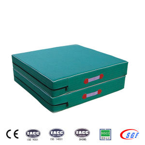 China Supplier Gym Equipment Wholesale Gymnastic Mat pictures & photos