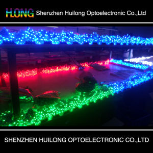 9mm LED Strip Light with High Brightness and High Quality pictures & photos