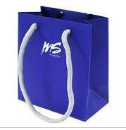 Paper Bag/Hand Bag/Gift Bag /Shopping Bag pictures & photos