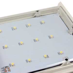 Ce Certification / Outdoor / 2.2W LED Wall Light SL1-1 pictures & photos