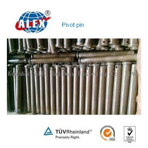 Pivot Pin for Equipment From China pictures & photos